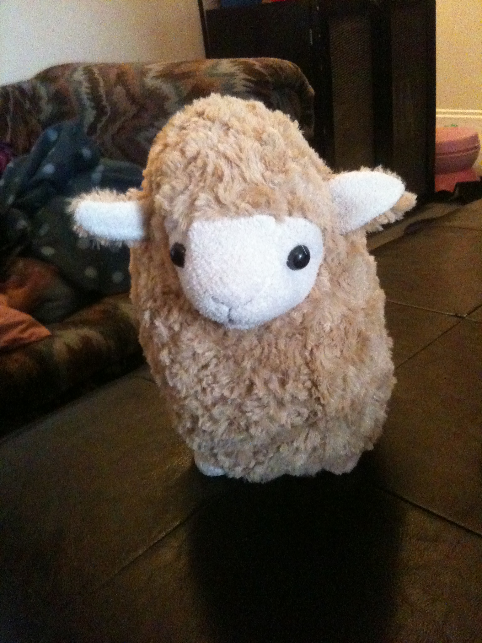 The Sheep I got them