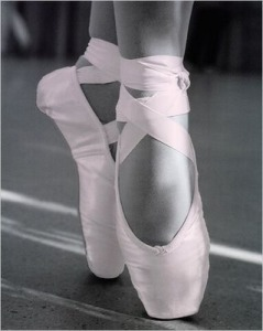 a ballet slipper photo