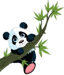 cute panda on tree
